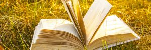 Background of open texture page book with horizon on sunset  lying in autumn fall field on dry yellow green fresh grass on sun set sky and spring forest backdrop Idea of back to school, education