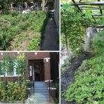 Unearthing urban agriculture in the Great North