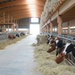 Changes in livestock farming required
