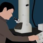 A glimpse into the world of piezotronics and piezo-phototronics