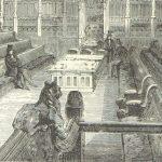 Politics in schoolgirl debating cultures in England, 1886-1914