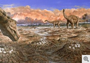 Sauropod dinosaurs at a shared nesting site in the Late Cretaceous.