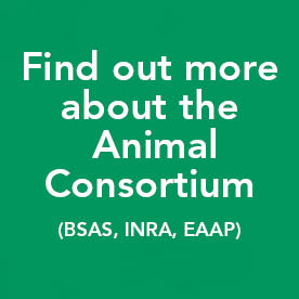 Find out more about the Animal Consortium