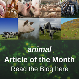 animal Article of the Month