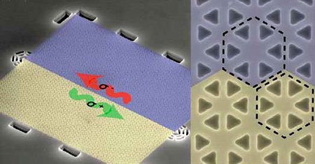 single phonon_topological material