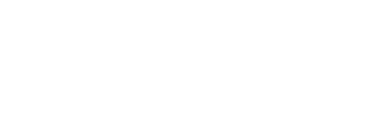 DS logo white
