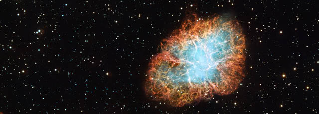 Electron Capture Supernovae