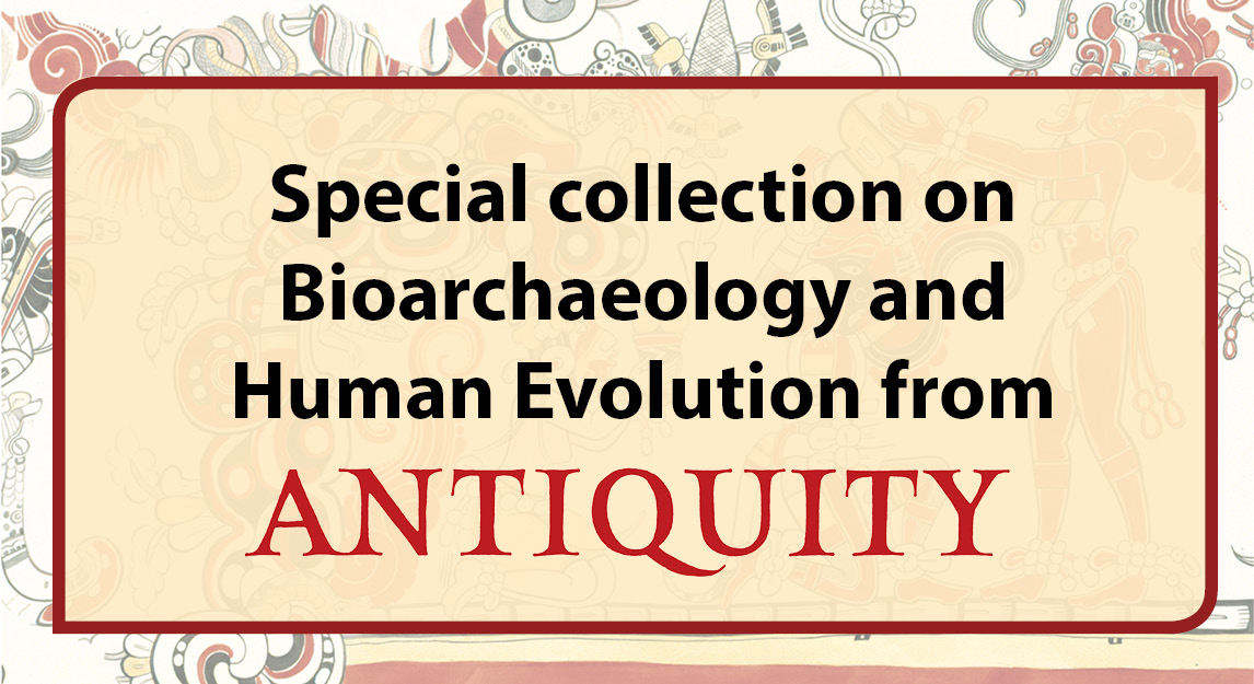 Bioarchaeology and human evolution