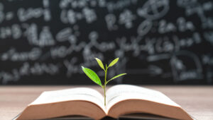 A plant sprouting out of a book, symbolising the practice of teaching sustainability