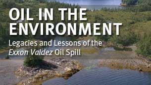 Oil in the Environment