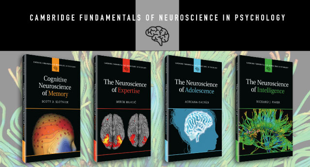 Fundamentals of Neuroscience in Psychology