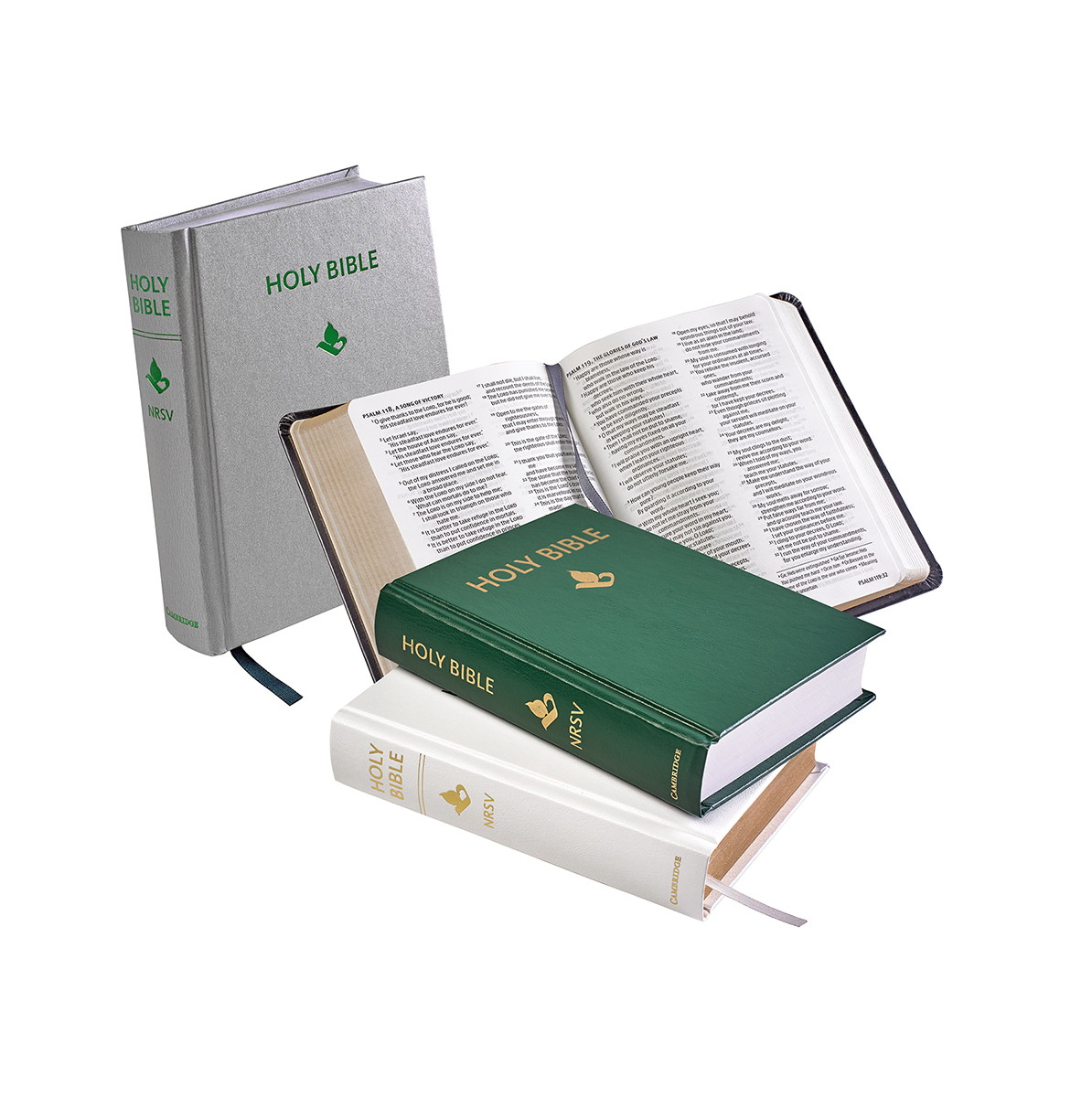 white, silver, green and grey Bibles