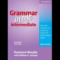 grammar in use intermediate pdf español