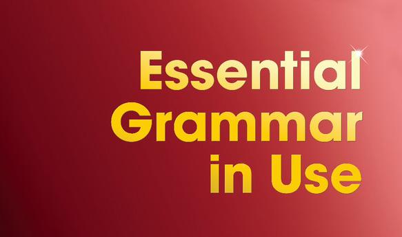 Essential grammar in use grammar vocabulary and pronunciation essentialgrammarinuse fandeluxe Choice Image